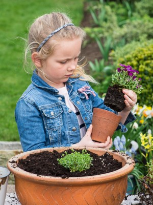 wpid17493-Child-Planting-Alpine-Bowl-QCHI065-nicola-stocken.jpg