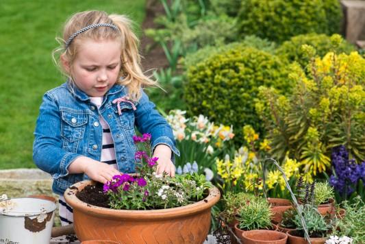 wpid17501-Child-Planting-Alpine-Bowl-QCHI069-nicola-stocken.jpg