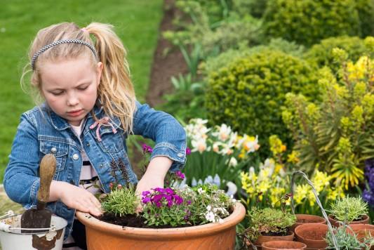 wpid17503-Child-Planting-Alpine-Bowl-QCHI071-nicola-stocken.jpg