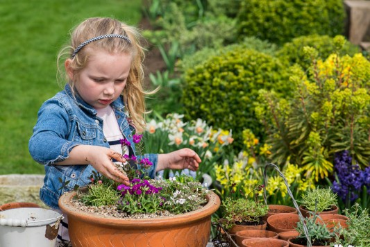 wpid17505-Child-Planting-Alpine-Bowl-QCHI072-nicola-stocken.jpg