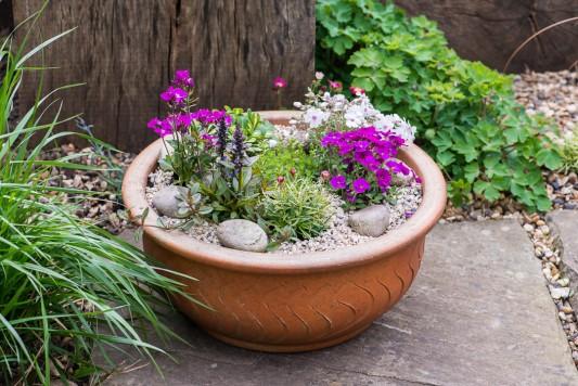 wpid17511-Child-Planting-Alpine-Bowl-QCHI075-nicola-stocken.jpg