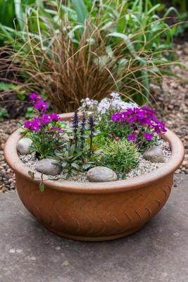 wpid17513-Child-Planting-Alpine-Bowl-QCHI076-nicola-stocken.jpg