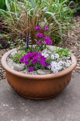 wpid17515-Child-Planting-Alpine-Bowl-QCHI077-nicola-stocken.jpg