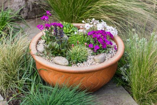 wpid17517-Child-Planting-Alpine-Bowl-QCHI078-nicola-stocken.jpg