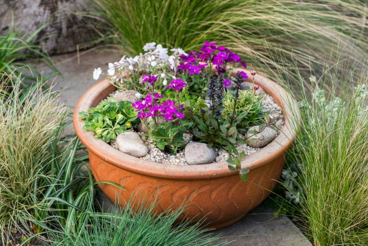 wpid17519-Child-Planting-Alpine-Bowl-QCHI081-nicola-stocken.jpg