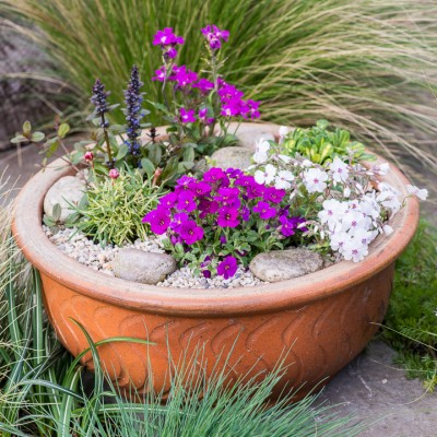 wpid17523-Child-Planting-Alpine-Bowl-QCHI083-nicola-stocken.jpg