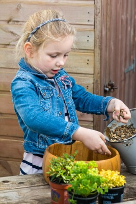 wpid17547-Child-Planting-Herb-Bowl-QCHI043-nicola-stocken.jpg