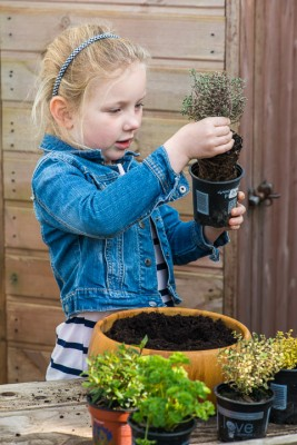 wpid17551-Child-Planting-Herb-Bowl-QCHI046-nicola-stocken.jpg
