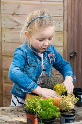wpid17557-Child-Planting-Herb-Bowl-QCHI049-nicola-stocken.jpg