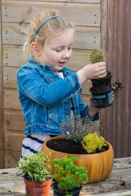 wpid17559-Child-Planting-Herb-Bowl-QCHI050-nicola-stocken.jpg