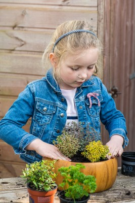 wpid17561-Child-Planting-Herb-Bowl-QCHI051-nicola-stocken.jpg