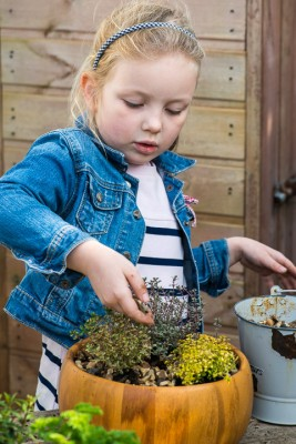 wpid17563-Child-Planting-Herb-Bowl-QCHI052-nicola-stocken.jpg
