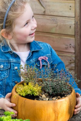 wpid17567-Child-Planting-Herb-Bowl-QCHI055-nicola-stocken.jpg