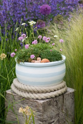 wpid17607-Childs-Seaside-Themed-Pots-QCHI128-nicola-stocken.jpg