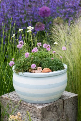 wpid17611-Childs-Seaside-Themed-Pots-QCHI130-nicola-stocken.jpg