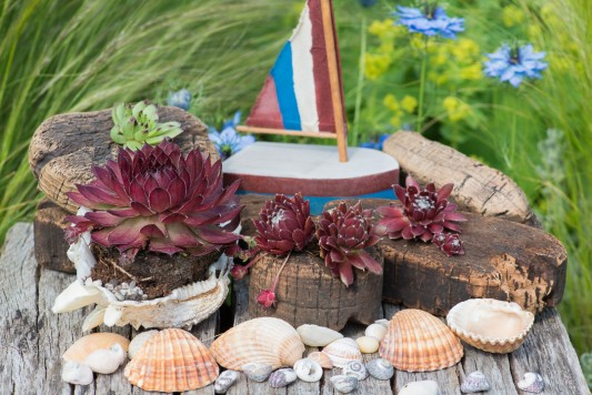 wpid17631-Childs-Seaside-Themed-Pots-QCHI152-nicola-stocken.jpg