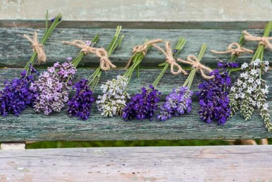 wpid17753-Lavender-Wand-Making-GORD151-nicola-stocken.jpg