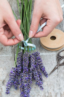 wpid17777-Lavender-Wand-Making-QCRA083-nicola-stocken.jpg