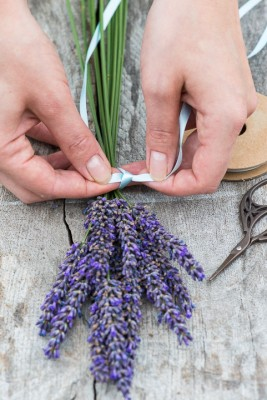 wpid17779-Lavender-Wand-Making-QCRA084-nicola-stocken.jpg