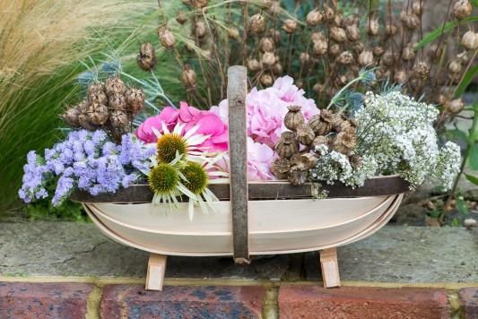 wpid17833-Picking-and-Drying-Flowers-QCRA173-nicola-stocken.jpg