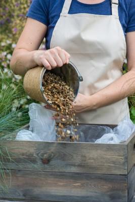 wpid17907-Planting-a-Drought-Resistant-Box-QCON321-nicola-stocken.jpg
