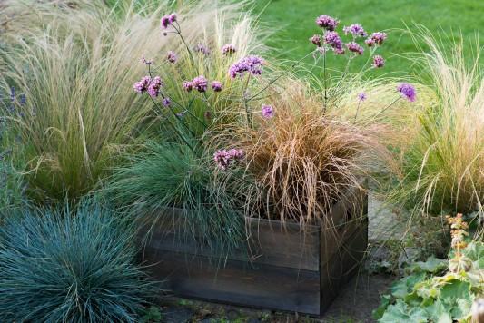 wpid17945-Planting-a-Drought-Resistant-Box-QCON340-nicola-stocken.jpg