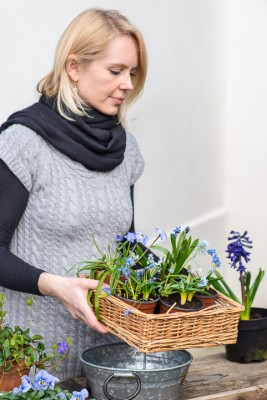 wpid18017-Planting-an-April-Pot-QCON249-nicola-stocken.jpg