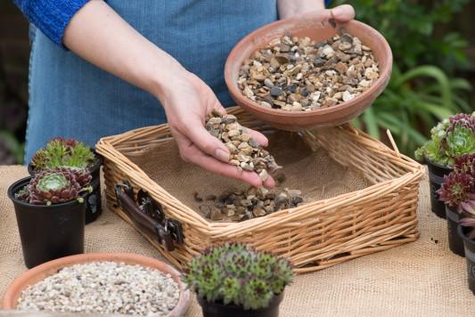 wpid18079-Planting-a-May-Charity-Find-QCON278-nicola-stocken.jpg