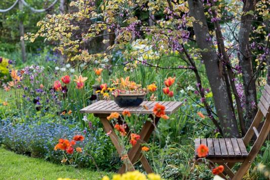 wpid18287-Brickwall-cottage-in-april-GBRI021-nicola-stocken.jpg