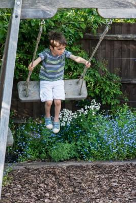 wpid18341-Family-Garden-in-May-GHST011-nicola-stocken.jpg