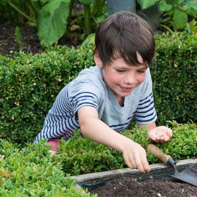 wpid18349-Family-Garden-in-May-GHST019-nicola-stocken.jpg