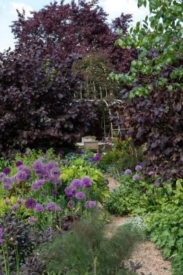 wpid18369-Family-Garden-in-May-GHST042-nicola-stocken.jpg