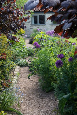 wpid18371-Family-Garden-in-May-GHST045-nicola-stocken.jpg