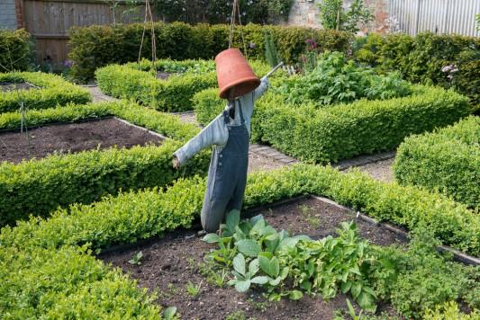 wpid18393-Family-Garden-in-May-GHST068-nicola-stocken.jpg