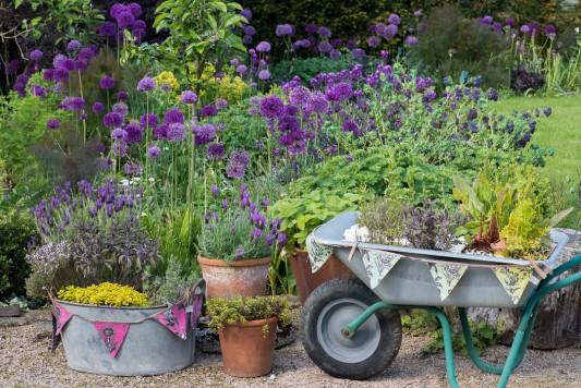 wpid18399-Family-Garden-in-May-GHST074-nicola-stocken.jpg