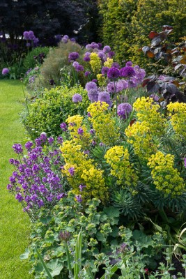 wpid18409-Family-Garden-in-May-GHST083-nicola-stocken.jpg
