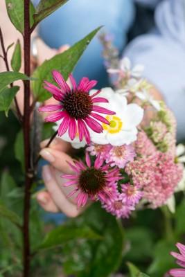 wpid18444-Garden-Posie-for-September-QPOS397-nicola-stocken.jpg