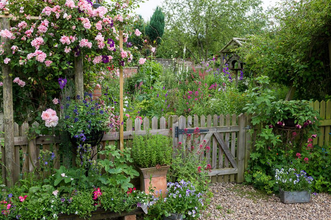 midsummer cottage garden - Cottage Garden