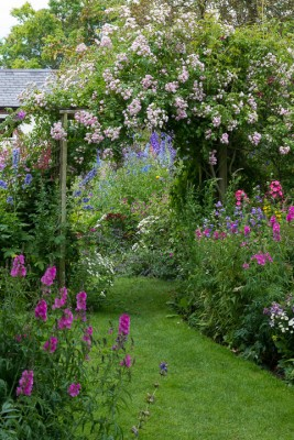 wpid18650-Midsummer-Cottage-Garden-GHGH011-nicola-stocken.jpg
