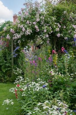 wpid18652-Midsummer-Cottage-Garden-GHGH013-nicola-stocken.jpg