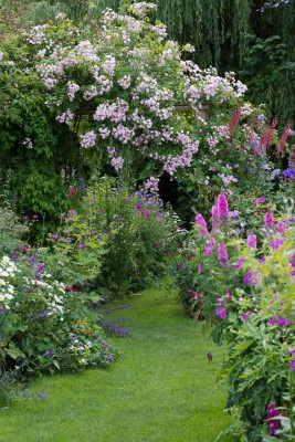 wpid18656-Midsummer-Cottage-Garden-GHGH021-nicola-stocken.jpg