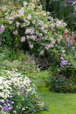 wpid18660-Midsummer-Cottage-Garden-GHGH023-nicola-stocken.jpg