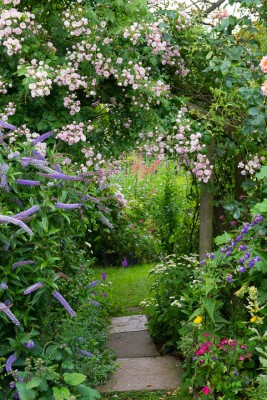 wpid18662-Midsummer-Cottage-Garden-GHGH024-nicola-stocken.jpg