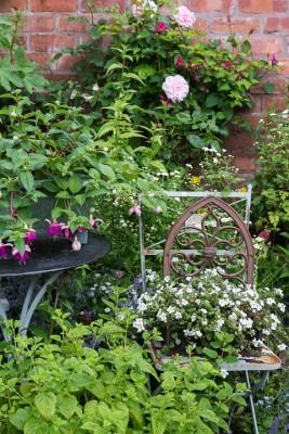 wpid18668-Midsummer-Cottage-Garden-GHGH038-nicola-stocken.jpg