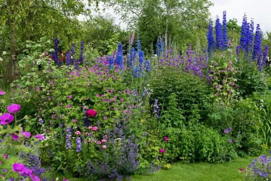 wpid18670-Midsummer-Cottage-Garden-GHGH044-nicola-stocken.jpg
