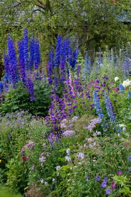 wpid18672-Midsummer-Cottage-Garden-GHGH047-nicola-stocken.jpg