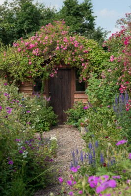 wpid18678-Midsummer-Cottage-Garden-GHGH057-nicola-stocken.jpg