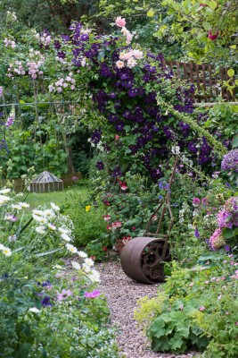 wpid18684-Midsummer-Cottage-Garden-GHGH064-nicola-stocken.jpg