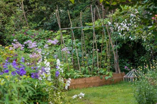 wpid18692-Midsummer-Cottage-Garden-GHGH076-nicola-stocken.jpg