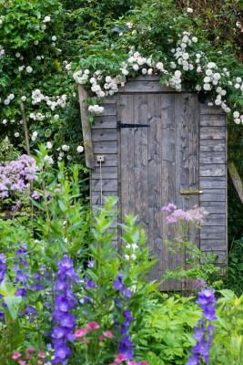 wpid18696-Midsummer-Cottage-Garden-GHGH078-nicola-stocken.jpg